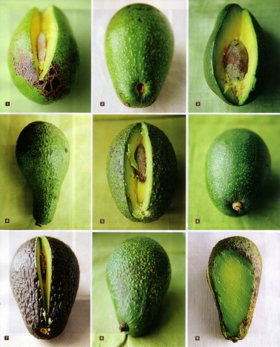 September 2007, Saveur, Avocado Love, Know Your Avocados, p. 84