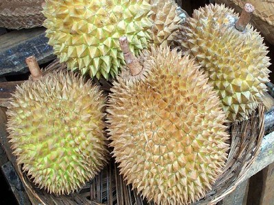 Durian, a large, spiky fruit of Southeast Asia known for its pungent odor